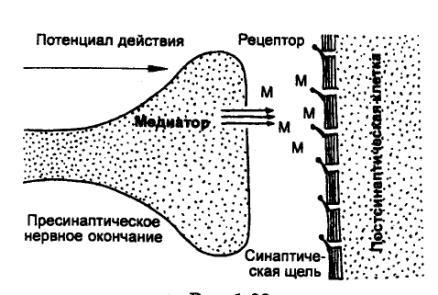 Рис. 1.33 Схема химической
