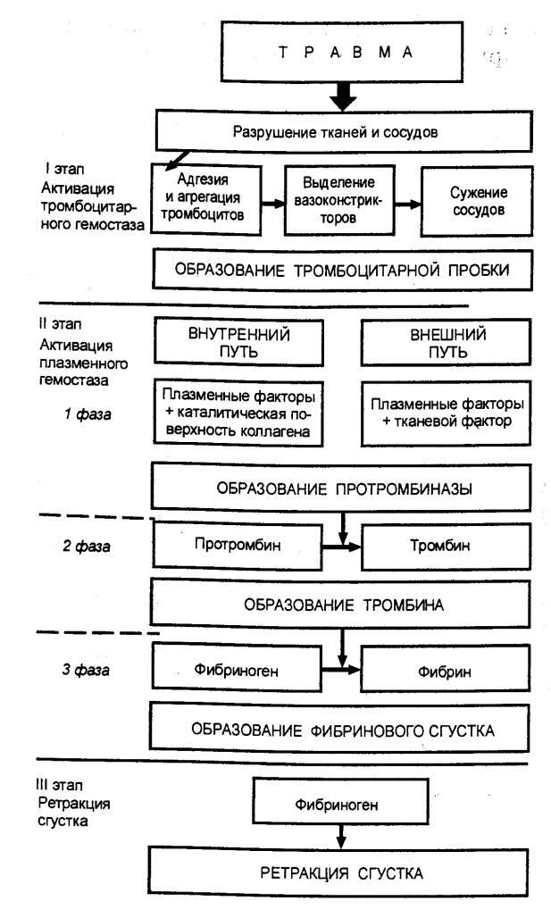 Тромбокиназа фото